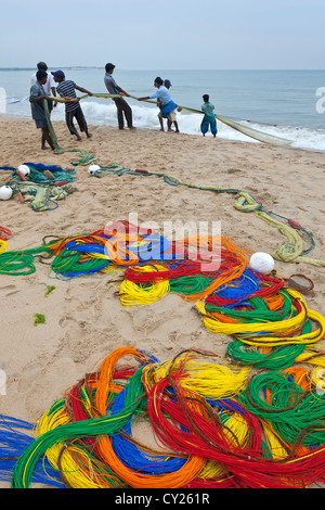 Fishermen pulling the net. Arugam Bay. Sri Lanka - Stock Photo