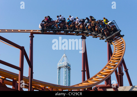 Knotts Berry Farm, California, USA. Roller coaster with Supreme Scream drop tower in background. - Stock Photo