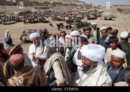 livestock market in kabul, Afghanistan - Stock Photo