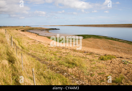 Saltings salt marsh environment River Ore, Hollesley, Suffolk, England, UK - Stock Photo