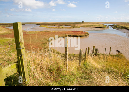 Saltings salt marsh environment River Ore, Hollesley, Suffolk, England - Stock Photo