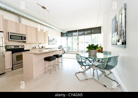Kitchen, dining and living room of apartment - artwork from photographer portfolio - Stock Photo