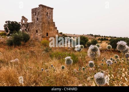 Ruins of Deir Samaan Dead City. Near Aleppo, Syria - Stock Photo