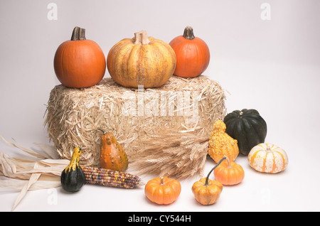 Pumpkins, acorn squash, Indian Corn, wheat stalks, and gourds on hay stack. Isolated on white background - Stock Photo