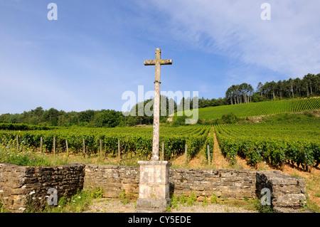 Cross of vineyard in Burgundy. Cote d'Or. France. - Stock Photo