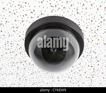 Security video surveillance camera globe on acoustic tile ceiling. - Stock Photo