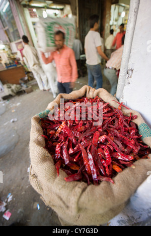 Red chillies for sale in an alley of Khari Baoli Road, (Spice Market Bazaar off Chandni Chowk), Old Delhi, India - Stock Photo