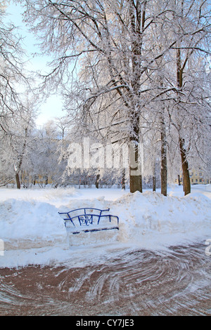 wooden bench in town park - Stock Photo