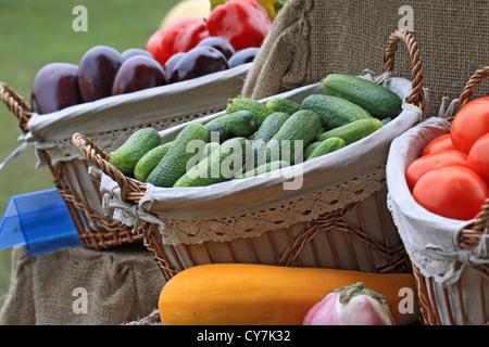 cucumber in basket on rural market - Stock Photo