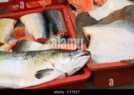big fish on rural market - Stock Photo