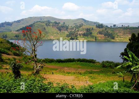 Uganda, Lake Bunyonyi Landscape - Stock Photo
