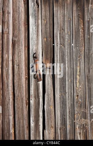 old barn door surface - Stock Photo