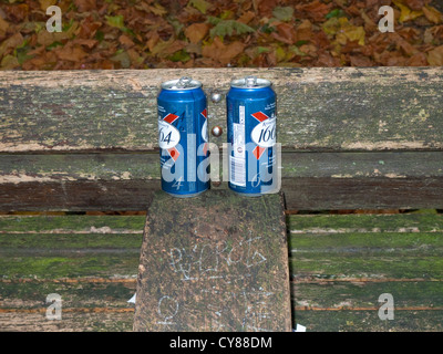 Two empty Lager tins on a Park Bench - Stock Photo
