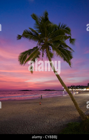 Vertical view of a palm tree rustling in the breeze during a beautiful sunset on Lighthouse beach in Kovalam. - Stock Photo