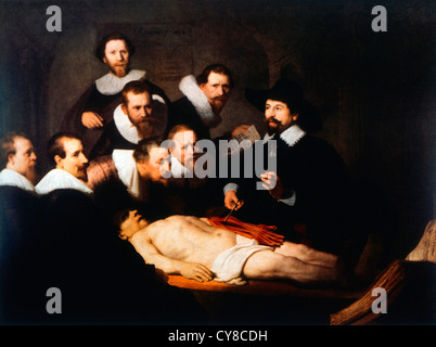 Rembrandt The Anatomy Lesson Of Dr Tulp Stock Photo 211231184 Alamy