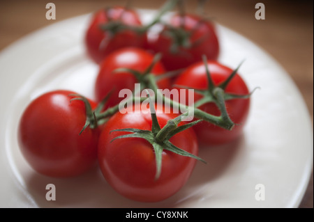 Group of Tomatoes on a white plate. Tomatoes are still connected to the vine stems. - Stock Photo