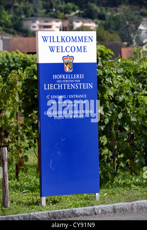 Winery of the principality of Liechtenstein - Stock Photo