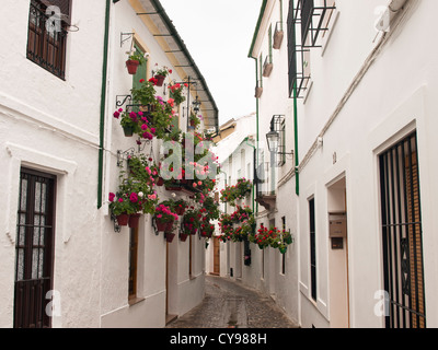 Priego de Cordoba , a town in Andalusia with many narrow streets, white houses and geranium decoration on the walls - Stock Photo