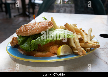 fried catfish sandwich with fries in a restaurant in key west florida usa - Stock Photo