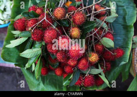 Rambutan fruit bunch selling on the fruit market in Asia - Stock Photo