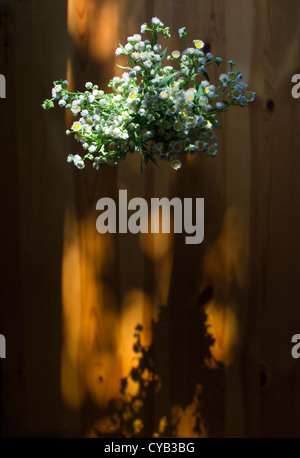 Above view of a bouquet of flowers on a wooden table with sunlight and shadows - Stock Photo