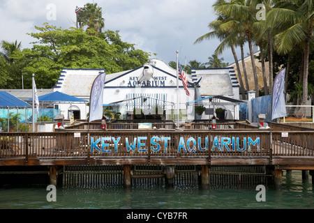 Usa Florida Key West Aquarium Stock Photo Royalty Free Image 71658141 Alamy