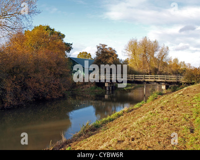 Autumn trees and dyke's in Woodwalton fen nature reserve. - Stock Photo
