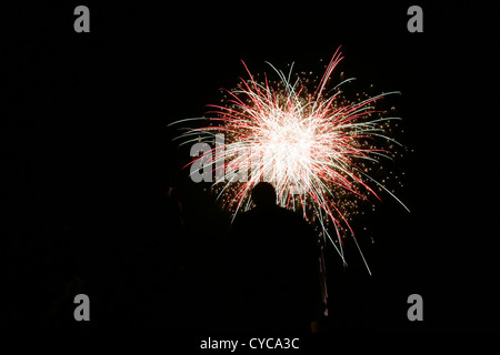 People watching fireworks - Stock Photo