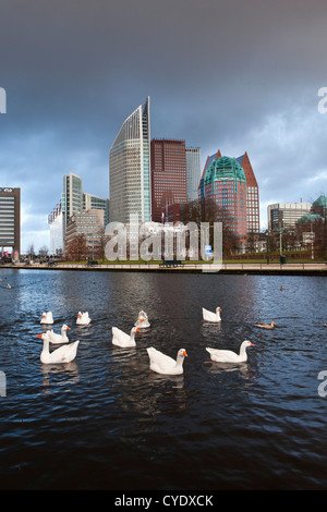 The Netherlands, Den Haag, The Hague, View of modern architecture. Mainly ministries. Foreground tame geese. - Stock Photo