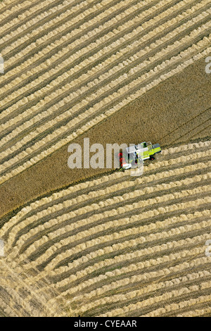 The Netherlands, Donderen, Combine harvester harvesting wheat field. Aerial. - Stock Photo