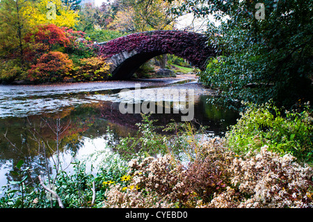 Autumn colors of trees decorate the Gapstow Bridge in Central Park in New York City. The picture was taken two days - Stock Photo