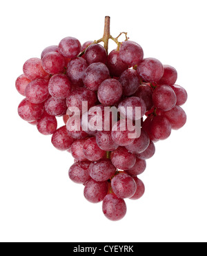 Fresh red grapes branch with water drops. Isolated on white background - Stock Photo