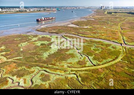 The Netherlands, Nieuw Namen, Container boat in Westerschelde river. Industrial area of Antwerp ( Belgium ) and - Stock Photo