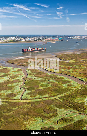 The Netherlands, Nieuw Namen, Container boat in Westerschelde river. Industrial area of Antwerp ( Belgium ) and - Stock Photo