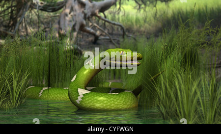3d illustration of the green python snake in swamp water - Stock Photo