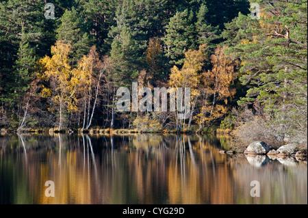 Loch Garten in Autumn, Nethybridge, famous for Osprey nesting activity, Inverness-shire, Scotland.  SCO 8753 - Stock Photo