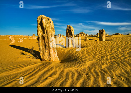 Emu Tracks in the sand of the Pinnacle Desert. - Stock Photo