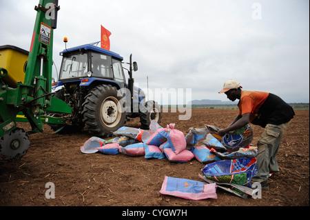 Africa ANGOLA, Malanje, ANGOLA Malange , PAC Pòlo Agroindustrial de Capanda, Black Stone Farm, a 20.000 hectare - Stock Photo
