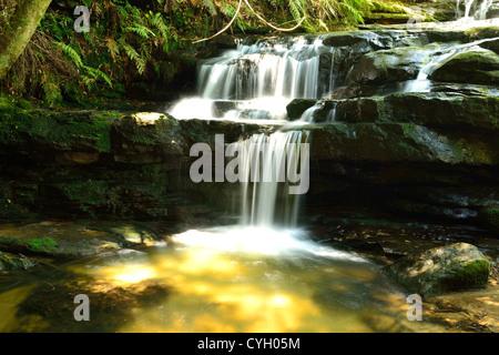Leura Cascades in Blue Mountains, Sydney, Australia. - Stock Photo