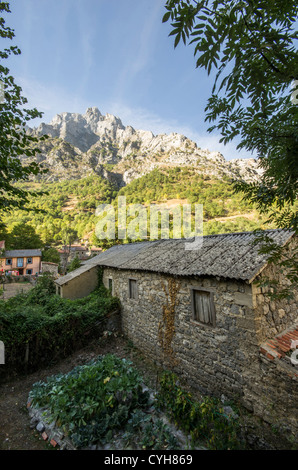 Cain in Picos de Europa National Park, Reserve of the Biosphere. Leon (Spain) - Stock Photo
