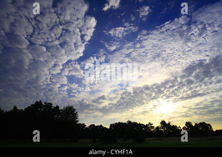 Blue sky scape at daybreak with sunrise through high clouds and treeline silhouette. - Stock Photo