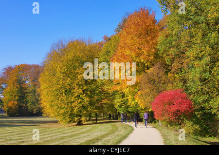 Park im Herbst - park in fall 02 - Stock Photo