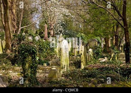 Graves at Highgate Cemetery, London, England, UK, Europe - Stock Photo