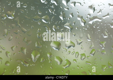 WA05260-00...WASHINGTON - Raindrops on window. - Stock Photo