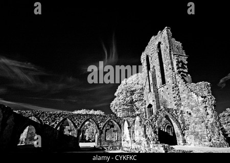 Infrared monochrome image of Croxden Cistercian Abbey ruins, near Uttoxeter Staffordshire  EDITORIAL USE ONLY - Stock Photo