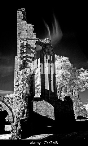 Infrared monochrome image of Croxden Cistercian Abbey ruins, near Uttoxeter Staffordshire - Stock Photo