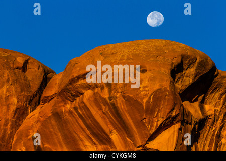 Moon setting over Parade of Elephants rock formation at sunrise in Arches National Park - Stock Photo