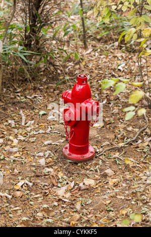 Fire Hydrant in the forest to protect against forest fires in National forest park of China - Stock Photo