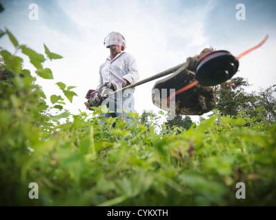 Man trimming weeds in garden - Stock Photo
