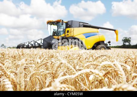 Harvester working in crop field - Stock Photo